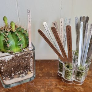 A cactus in a glass pot next to a small container of stamped aluminum sticks that have different slogans relating to mother's day